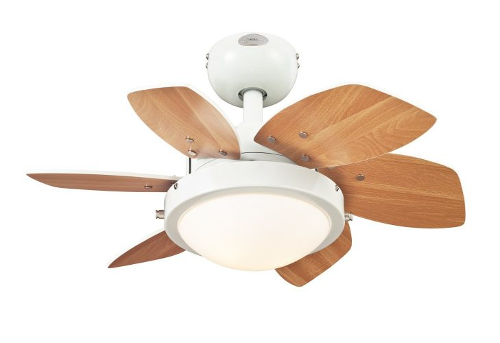 Quince Ceiling Fan