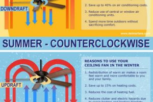 Which Way Should A Ceiling Fan Turn?