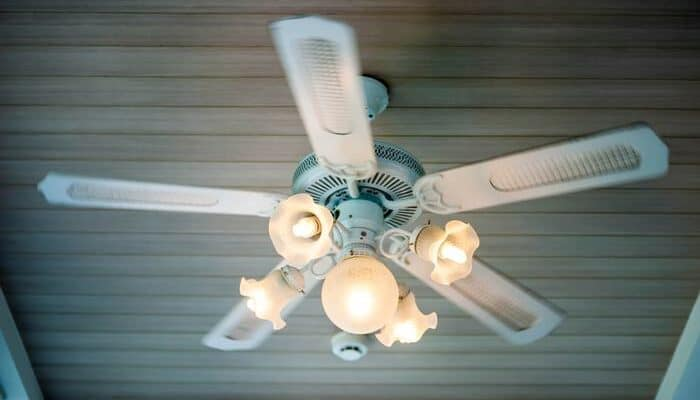 Ceiling fan with candelabra bulbs