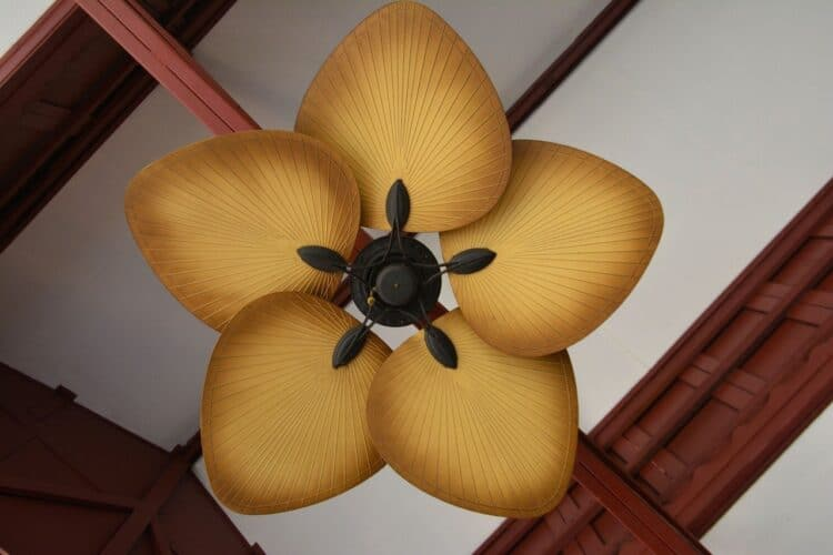 Tropical Ceiling Fan